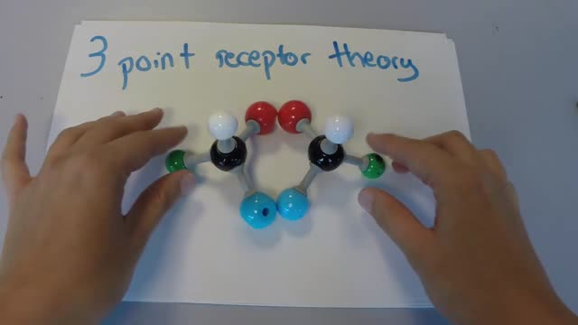 The 3 point receptor theory